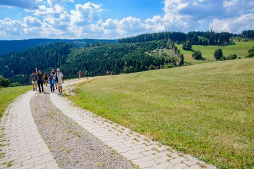 MVH Hütte-16